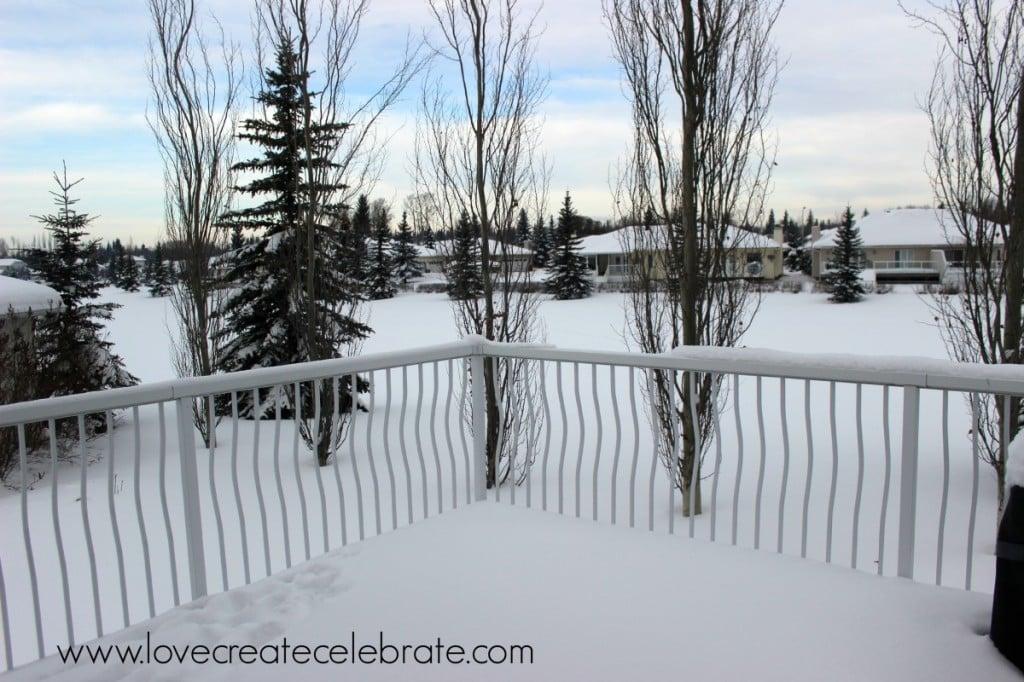 A snowy Albertan backyard