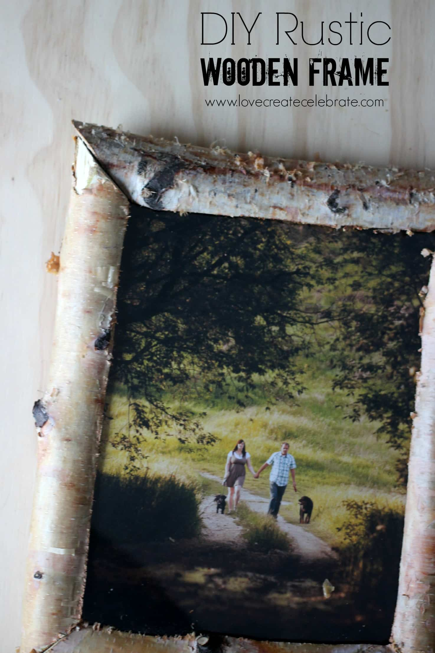Rustic birch wood frame love create celebrate rustic birch wood frame jeuxipadfo Choice Image
