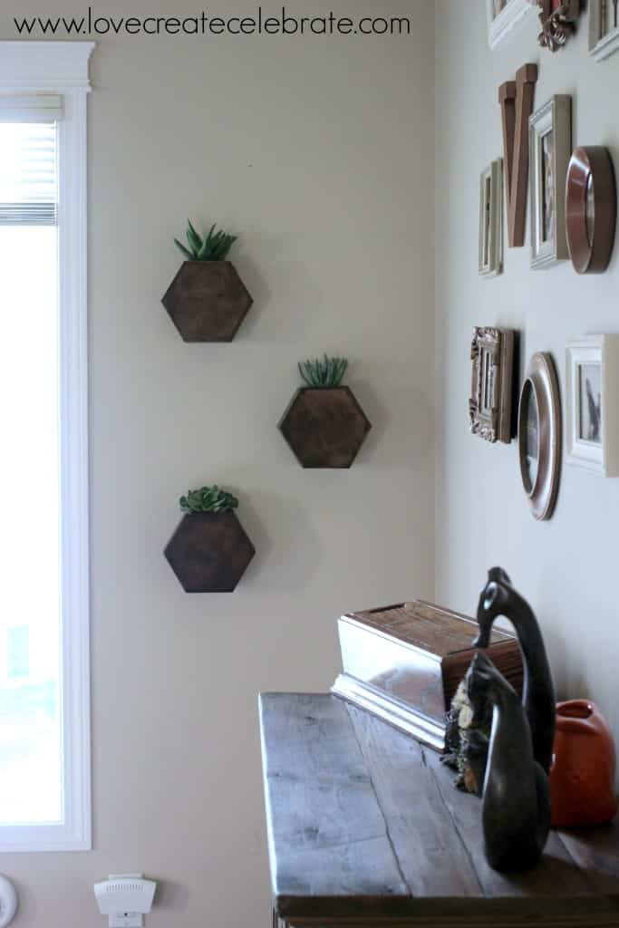 My finished hexagon wall planters hung on the wall