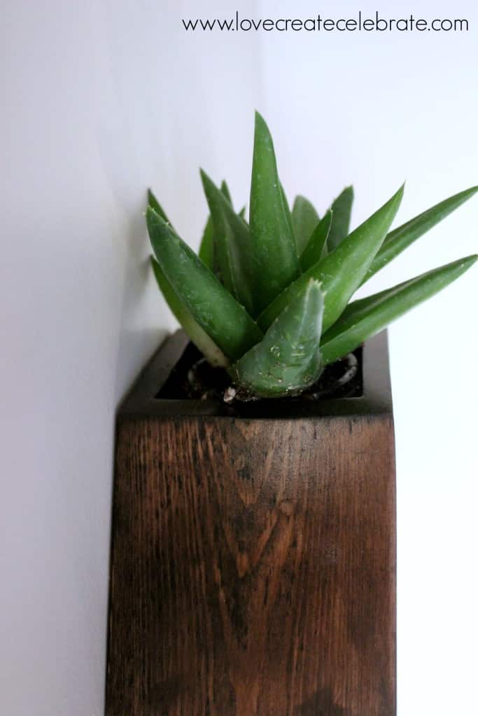 Hexagon Wall Planter