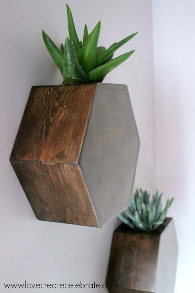 A closeup of my finished hexagon wall planters