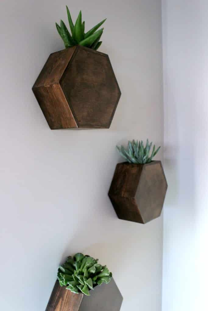 my finished hexagon wall planters