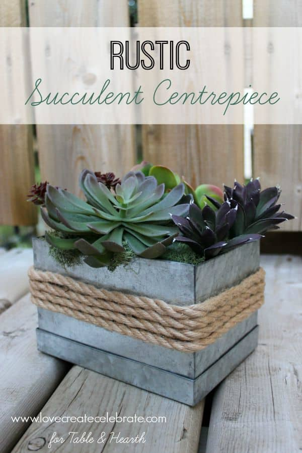 How cute!!!! Just a few simple items turn this little galvanized box into a rustic and industrial succulent planter!