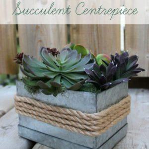 Rustic Succulent Centrepiece