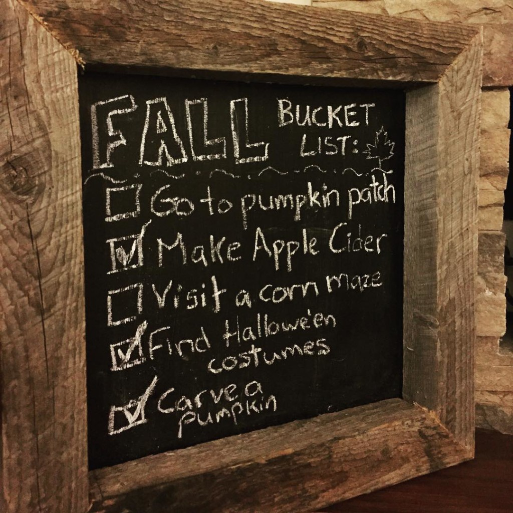 Well, I got a couple of things on my to-do list before the winter came! Unfortunately our pumpkin patch and corn maze closed early October and we never made it :( How did your fall bucket list go?!