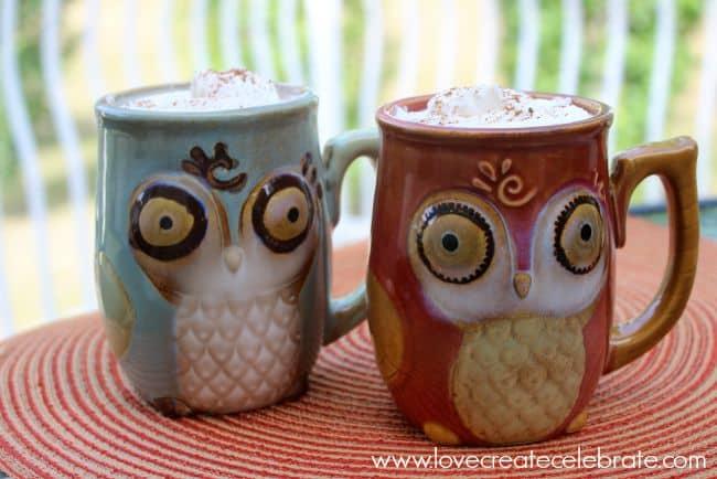 Pumpkin Spice Owl Mugs