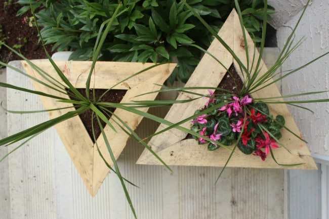Triangle planters from above