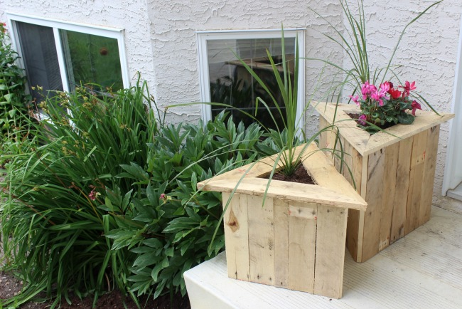 Free plans to build your own Triangle Pallet Planters from an old pallet. Who doesn't love a quick and easy DIY pallet project! Beautiful pallet furniture for your patio or deck! Love these Triangle Planters!