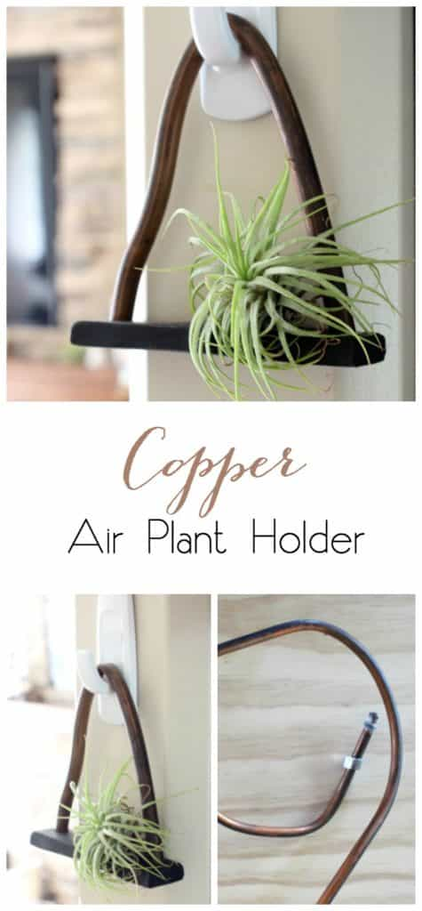 Copper Air Plant Holder