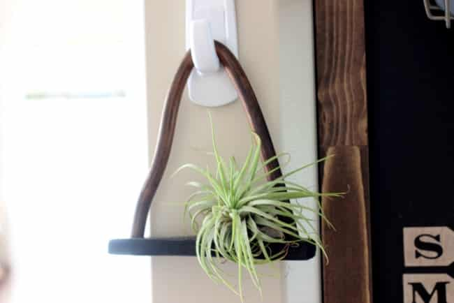 Love this chic DIY shelf for air plants! Black clay and copper are the perfect combination!