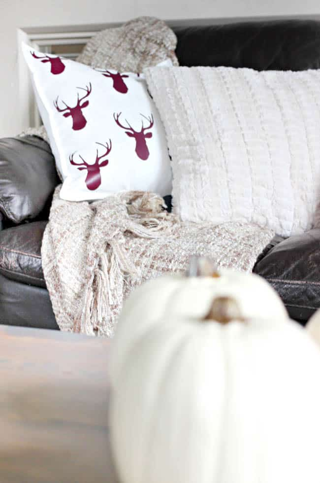 Fall-themed pillows and a cozy throw are an excellent way to cozy up in style