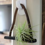 DIY Copper Air Plant Holder