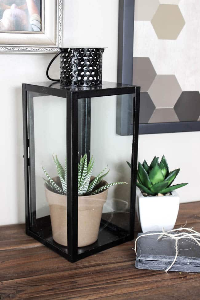 Make this DIY Modern Closed Terrarium in less than five minutes! Plus three different ideas to fill your terrarium. The perfect five minute project for spring!
