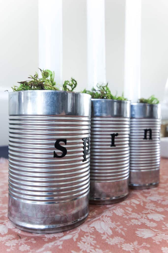 A beautiful, earthy centerpiece for your spring or summer table settings! Love the use of old tin cans! This quick DIY would take less than 10 minutes!