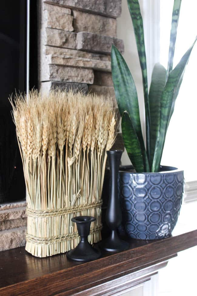 A closeup of wheat and a plant over the fireplace