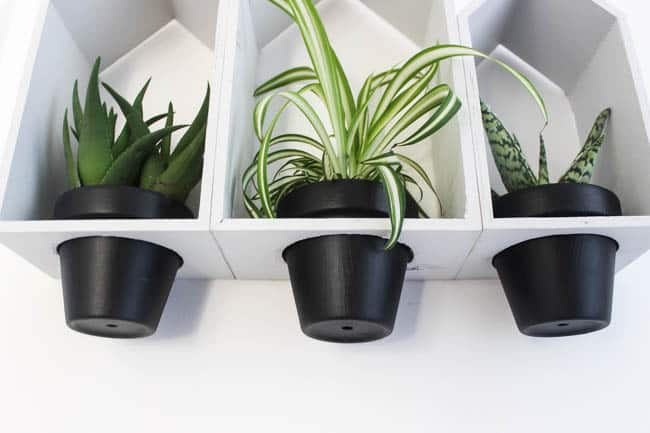 Love these modern style hanging wall planters - such a budget friendly project!