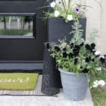 7 Budget-Friendly Ways to Add Curb Appeal to Your Front Entry