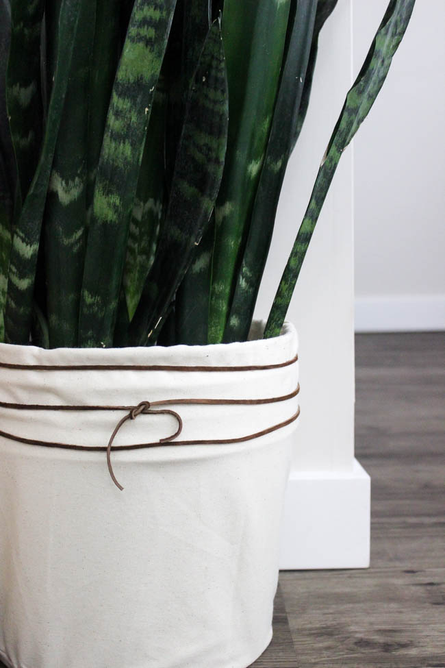 LOVE this budget-friendly planter! Make your own DIY canvas planter with an old bucket and some fabric. A beautiful modern DIY idea!