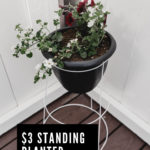 "Standing Deck planter with text overlay reading ""$3 standing planter"""
