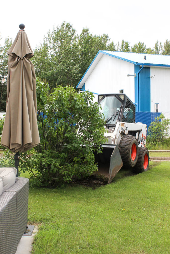 using a skid steer to remove a bush