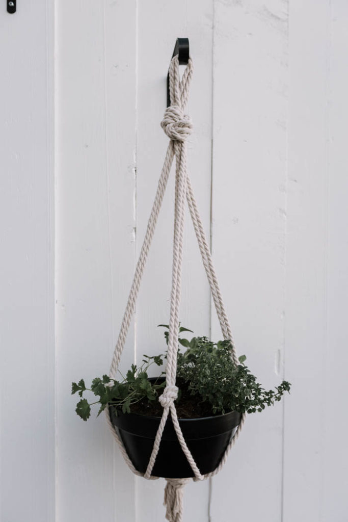 Five minute hanging planter with black pot