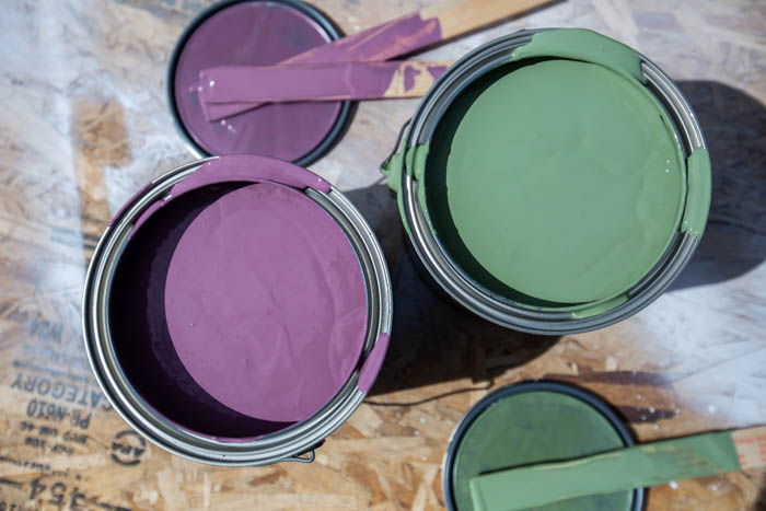 Valspar outdoor paint in canton purple and cactus shadow
