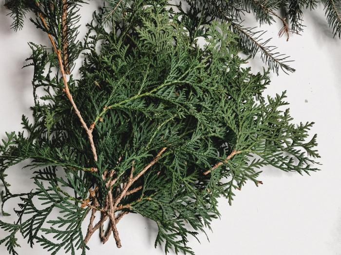 Cedar branches to make DIY giant pine wreath