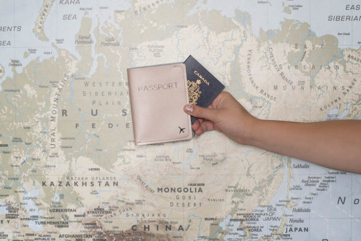 DIY Metallic Leather Passport Holder with Cricut