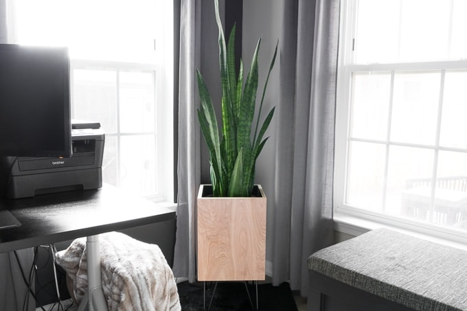 DIY Modern Planter: Plywood With Hairpin Legs