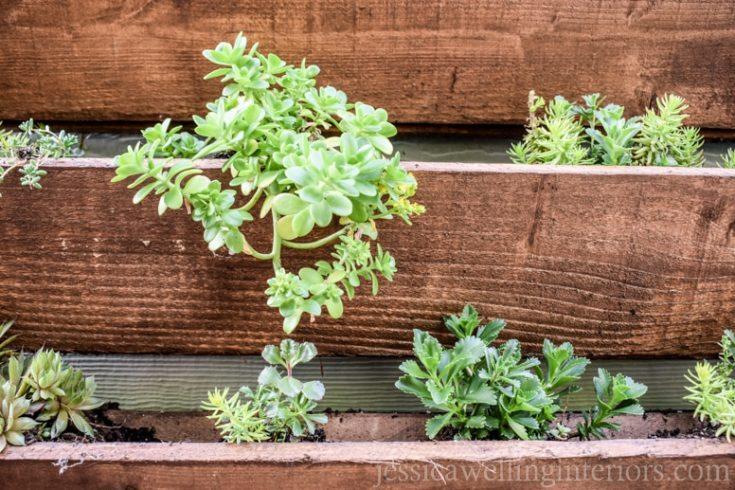 DIY Outdoor Vertical Garden