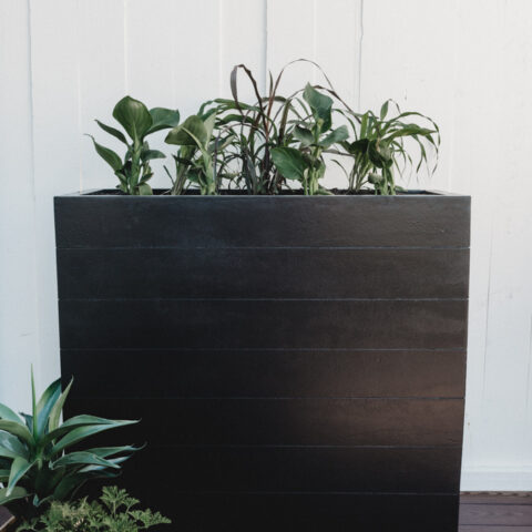 Large Planter on the deck
