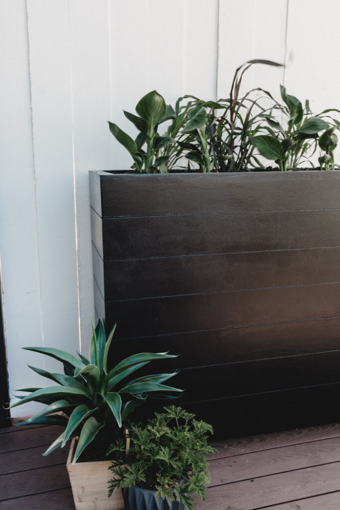 Large black planter box