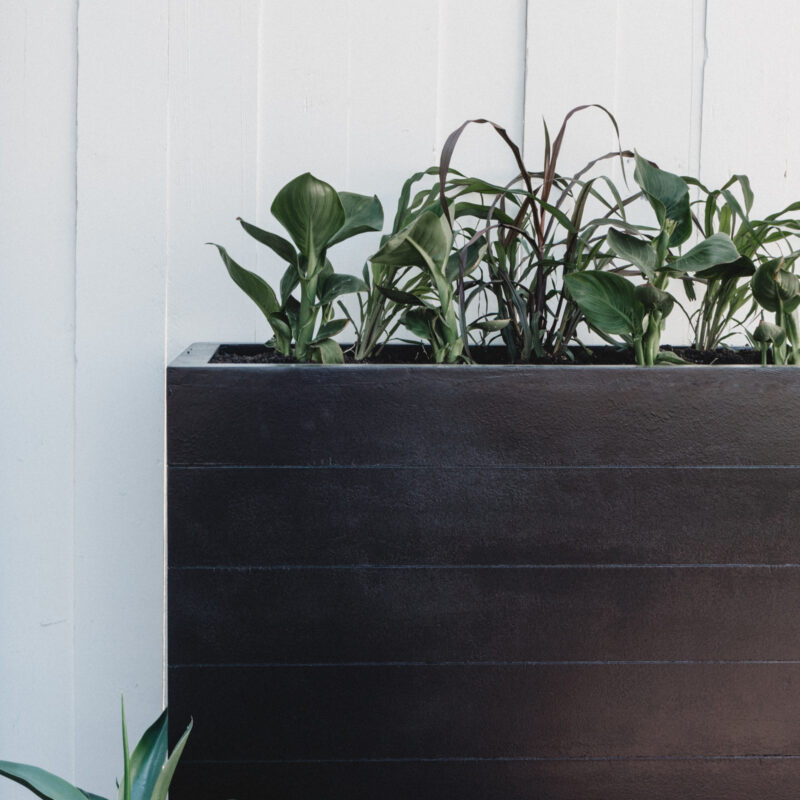 large outdoor planter box