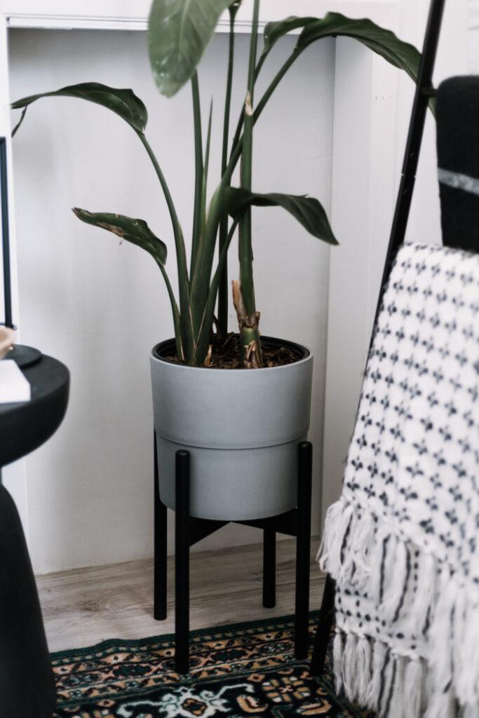 grey and black mid-century modern planter