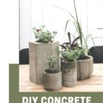 Photo of concrete planters with text reading DIY Concrete Planters