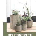 Photo of concrete planters with text reading DIY Concrete Planters
