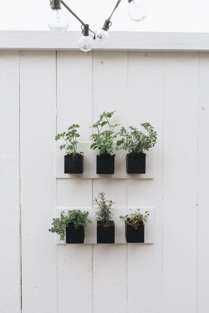 gorgeous summer herb garden DIY with dollar store supplies
