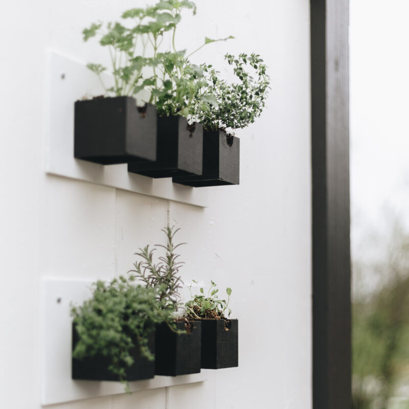beautiful modern outdoor herb garden