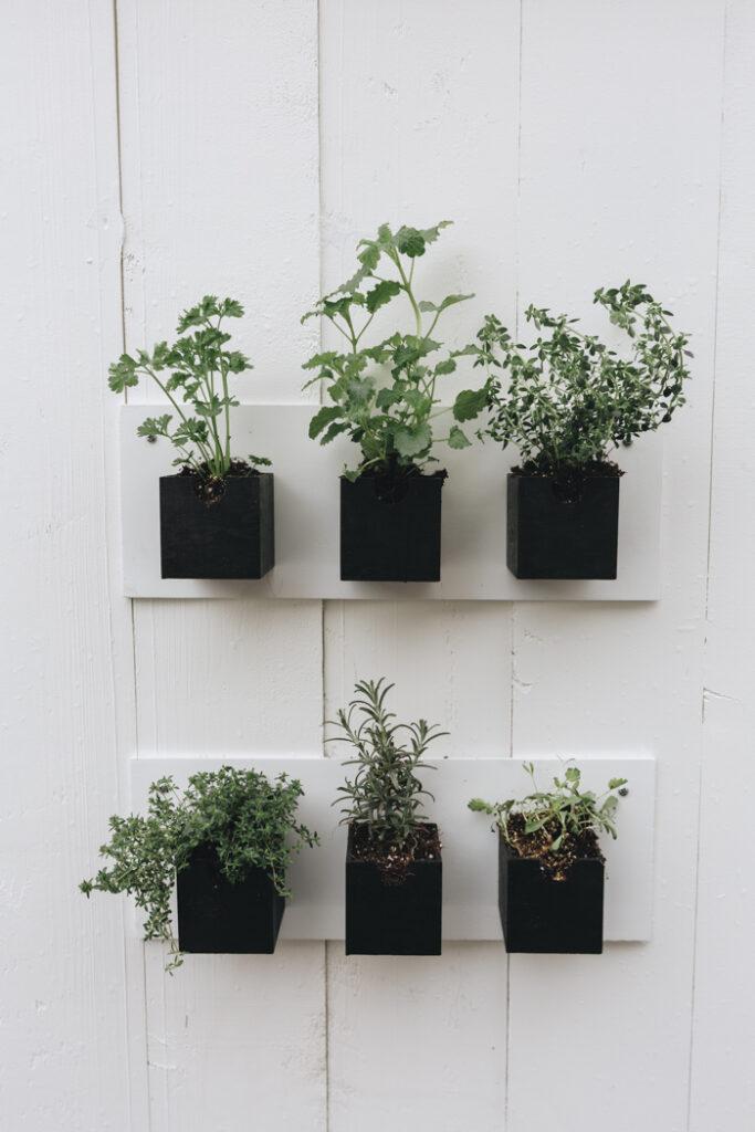 Stunning Hanging Herb Garden DIY