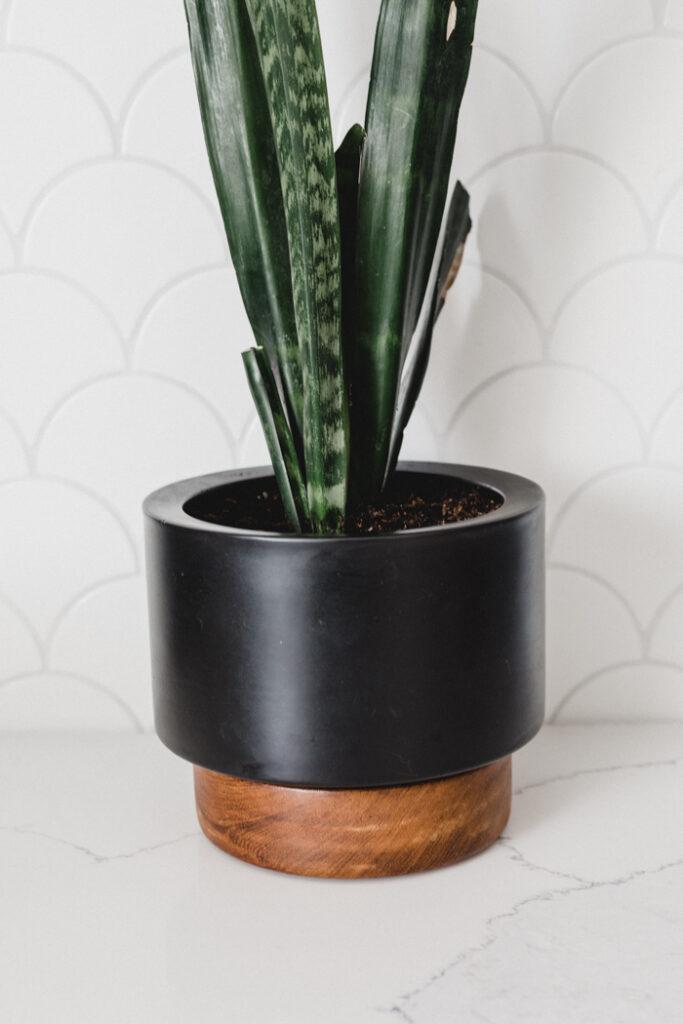 Modern DIY Planter