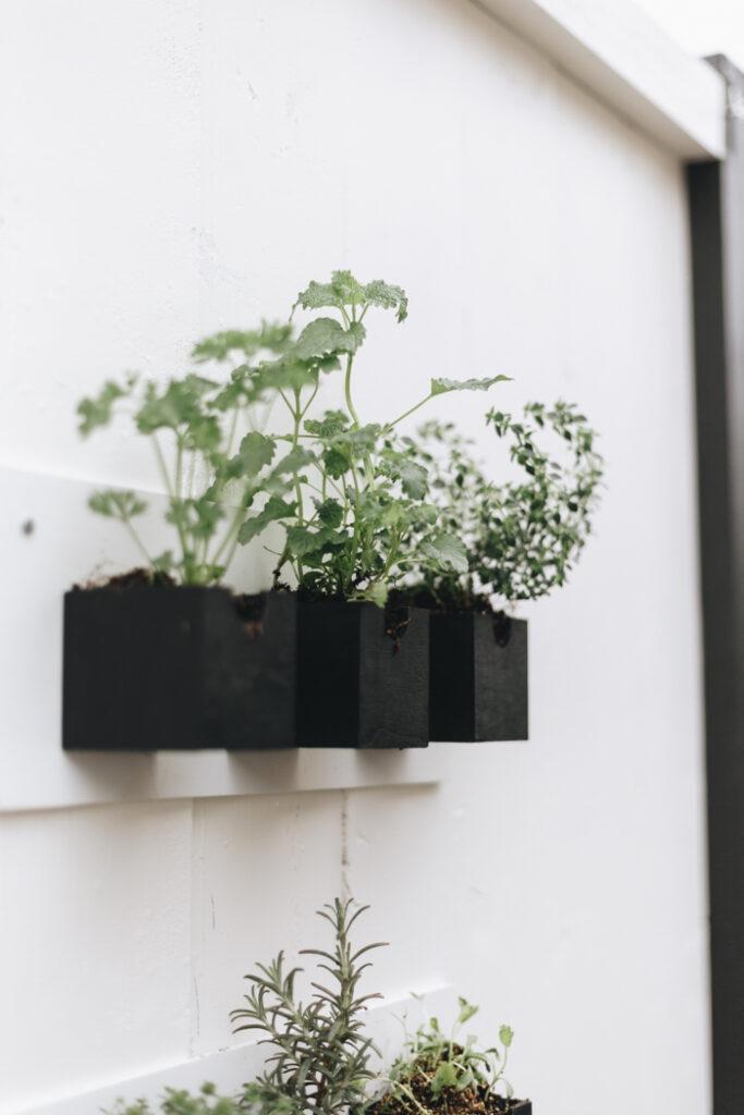 Modern Herb Planters