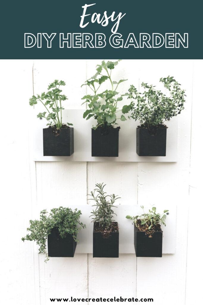 dollar store DIY herb garden