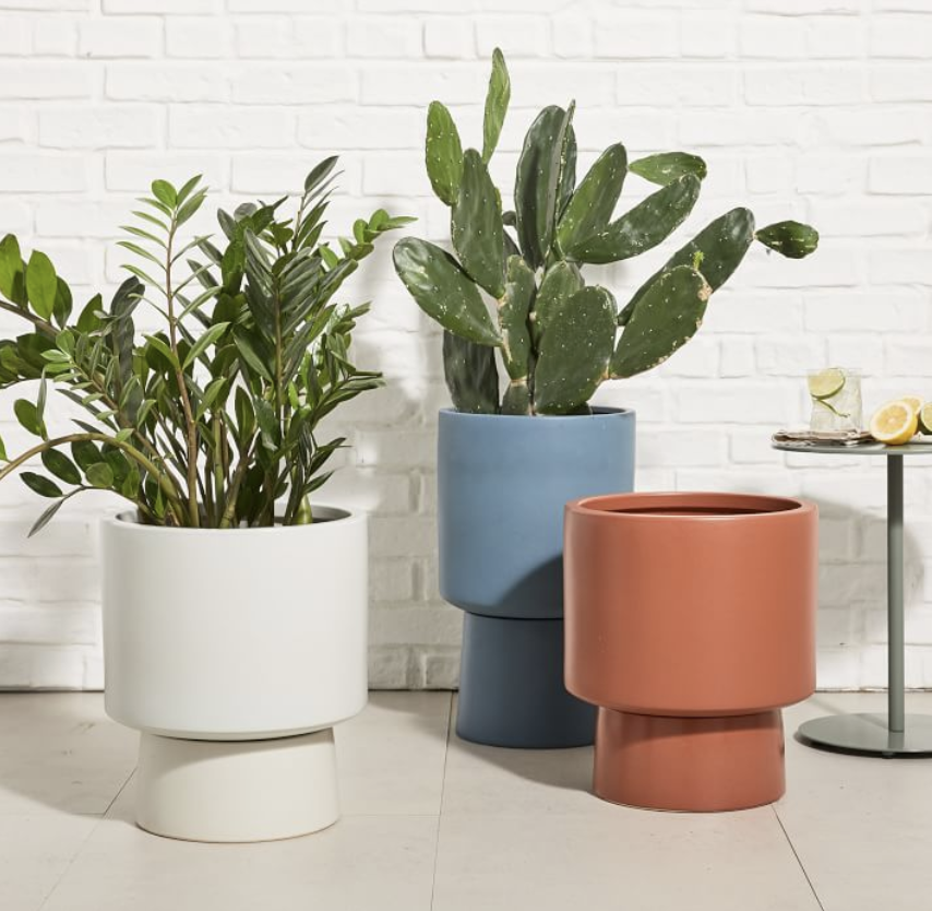 Pedestal Planters from West Elm