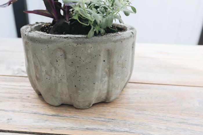 DIY concrete planter idea