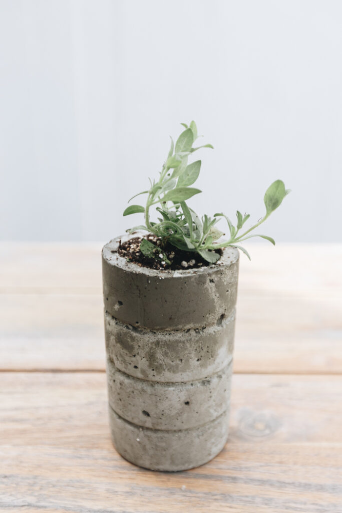 easy DIY cement planter