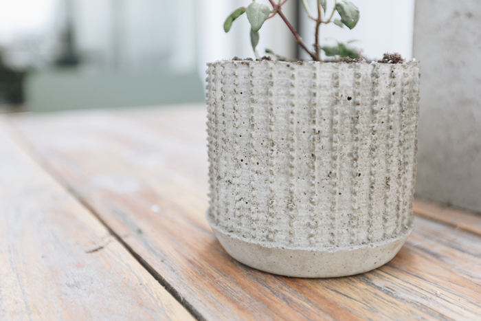 Creative DIY concrete planter idea